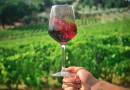 The difficult affair between wine and oxygen